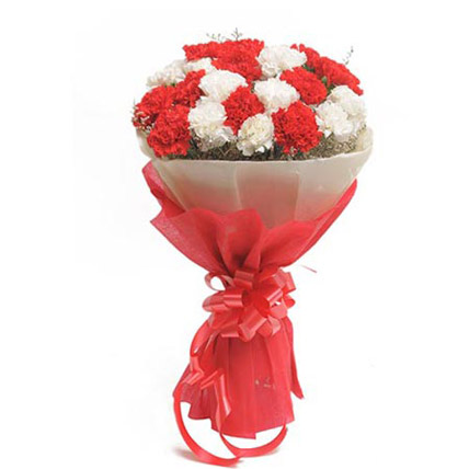 send flower Dr. Mukerjee Nagar DelhiRed & White Carnation Bunch