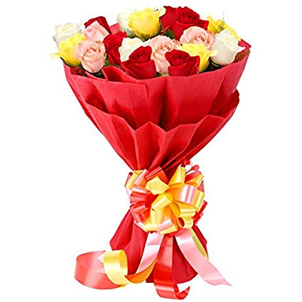 send flower Ashram DelhiBunch of 20 Mixed Colour Roses