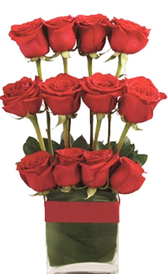 send flower Anand Niketan DelhiVase Arrangement of 12 Red Rose