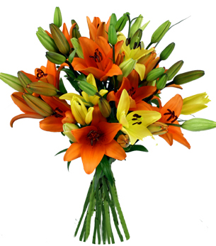 send flower Subhash Nagar DelhiDelicate Beauty