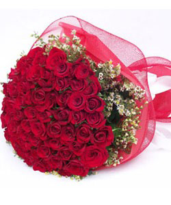 send flower Bhajan Pura DelhiDazzling RED