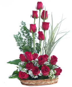 send flower Vasant viharI want RED