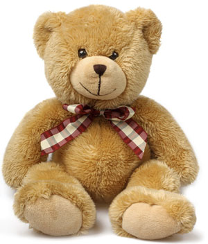 Huggable Teddy