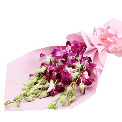 send flower Rajouri Garden Delhi6 Purple orchids in pink paper bunch